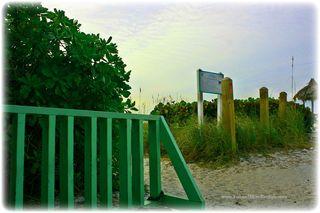 Bikerackgreen.jpg