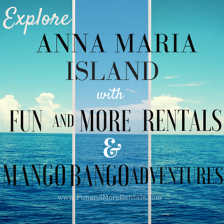 FUN AND MORE RENTALS & mango bango
